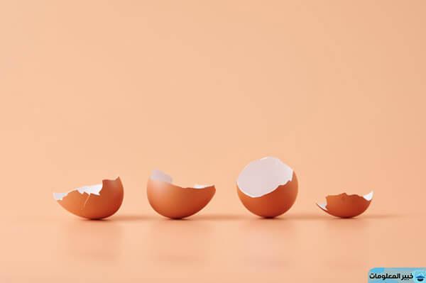 رؤية سقوط البيض في المنام